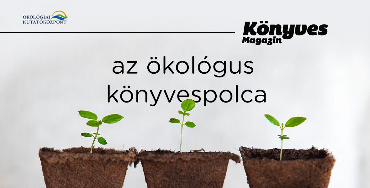 Kovács-Hostyánszki Anikó: Milyen jövő várhat ránk méhek nélkül?