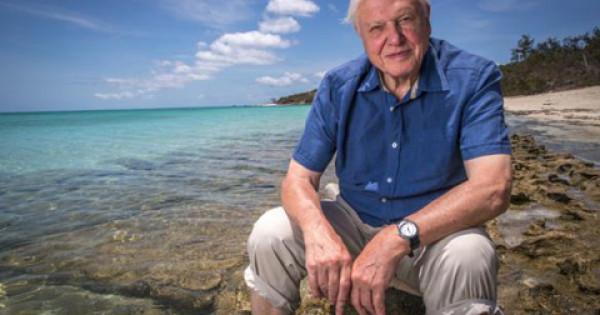 15 elképesztő tény Sir David Attenborough életéről – Könyves magazin
