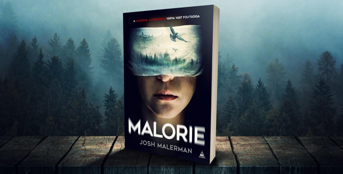 A Bird Box folytatásában Malorie-nak végzetes döntést kell hoznia