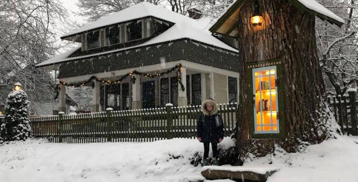Hangulatos közösségi könyvtár lett egy 110 éves fa odvából