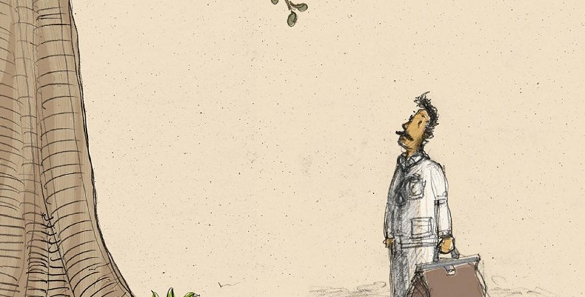 Animációs film készülhet az Apufából